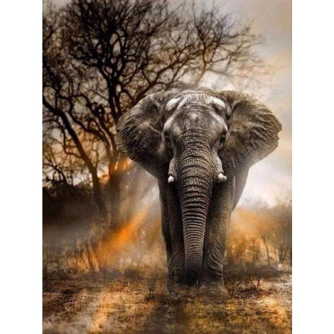 African Elephant Diamond Painting Kit
