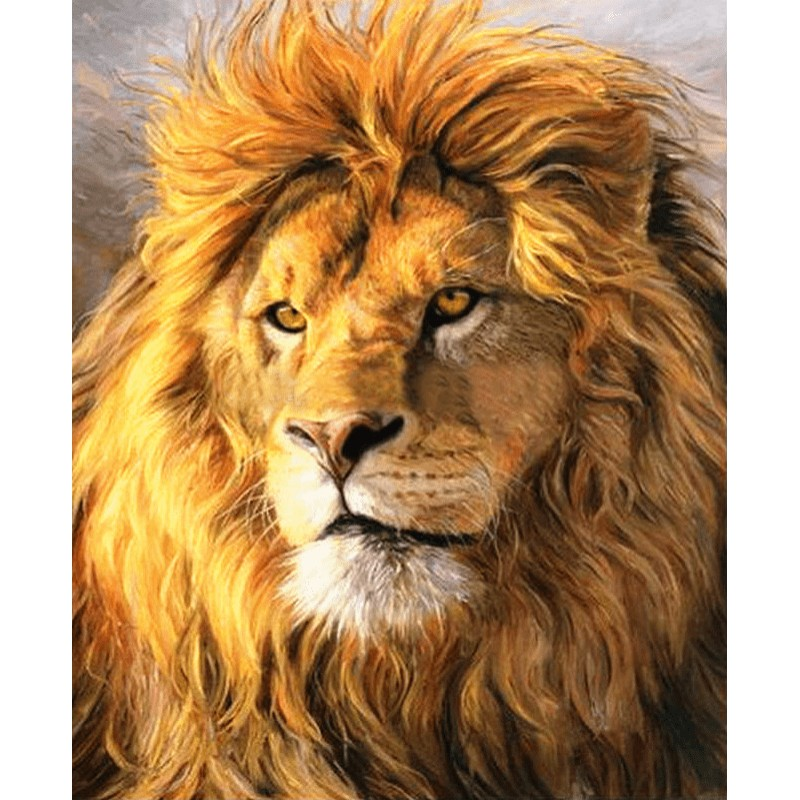 King of the Jungle D...
