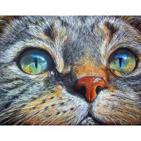 Cat Face Diamond Painting...