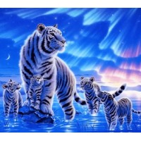 Aurora Winter Tiger Famil...